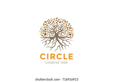 Circle Tree with Roots Logo design vector template. Garden Natural Eco Organic Logotype concept icon