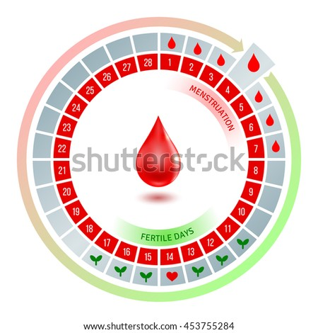 Circular Flow Chart Shiny Red Blood Stock Vector Royalty Free