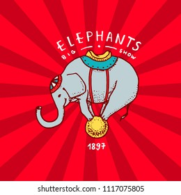 Circus elephant badge. Performance on the ball. Vintage Carnival logos or emblems. Label for the festival banner and show. retro cute animal. engraved hand drawn sketch.