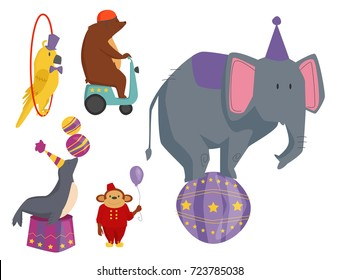 Circus funny animals vector cheerful zoo entertainment magician performer carnival illustration