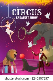 Circus show, acrobatics and magic, trained animals. Vector female aerial acrobat in hoop and magician with doves, elephant on sphere and seal with ball. Wild lion, stage performance, round arena