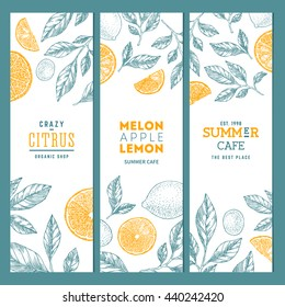 Citrus banner collection. Line art graphic. Lemons and oranges illustration. Vector illustration