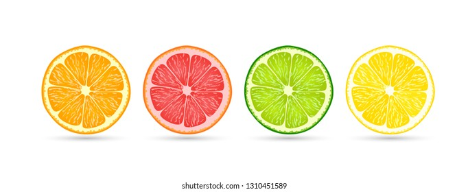 Citrus fruit slices of orange, grapefruit, lime and lemon isolated on a flat white background with shadows underneath, vector illustration