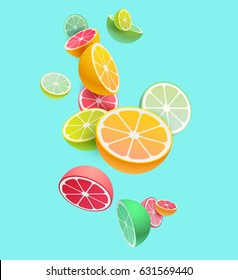 Citrus fruits composition. Vector styling.