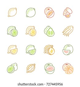 Citrus fruits icons - Lemon, orange and pomelo