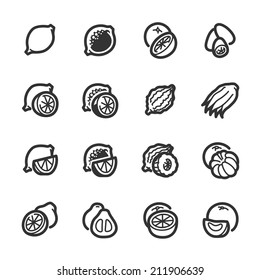 Citrus fruits icons. Professional vector icons for your website, application and presentation.