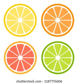 Citrus slices of lemon, orange, lime and grapefruit. Vector illustration