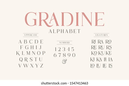 Classic typography elegant. Alphabet and numbering  uppercase. Vector illustration word. - Shutterstock ID 1547413463