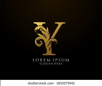 Y Name Hd Stock Images Shutterstock