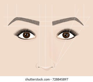 Classical shape of eyebrows. Microblading and permanent make-up. The scheme of the correct construction.