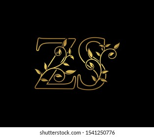 Zs Images Stock Photos Vectors Shutterstock