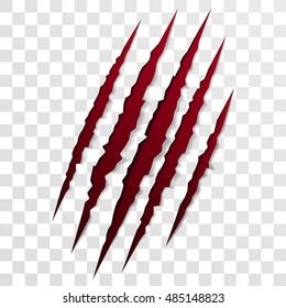 Claw scratch mark. Vector bear or tiger paw claw scratch bloody trace. Shredded paper