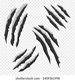 Claws scratches isolated on transparent background. Animal claw scratch like lion, tiger, bear, cat, wolf. Vector illustration