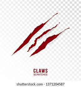 Claws scratches - vector isolated on transparent background. Claws scratching animal (cat, tiger, lion, bear) illustration. - Vector