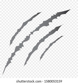 Claws scratches - vector isolated on transparent background.  Vector bear or tiger paw claw scratch trace. Shredded paper.Halloween monster, horror marking vector scratching set. Claw marks.