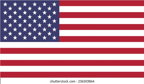 Clean flag of USA, America, vector illustration