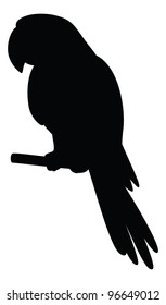 Clever speaking parrot sits on a wooden pole, black silhouette on white background. Vector