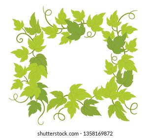 Climbing plant frame square. Border frame. Copy space for text. Curls green leaves. Vector flat Illustration.