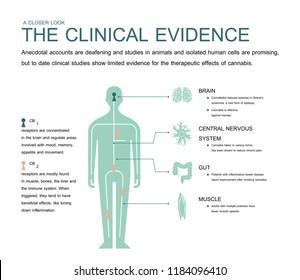 the clinical evidence cannabis