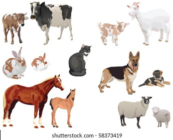 clip art set of domestic animals with cubs