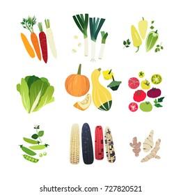 Clip art vegetable set with carrot, leek onion, sweet Hungarian pepper, Romain lettuce, various squashes, tomato, green pea, corn stalks and Jerusalem artichoke