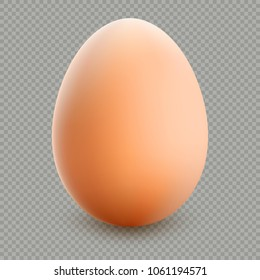 Close up of brown egg isolated on transparent background. EPS 10 vector file