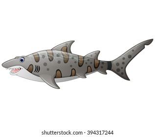 close up tiger shark