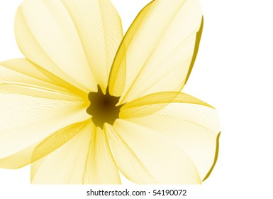 Close-up flower background