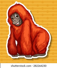 Closeup happy orangutan smiling alone