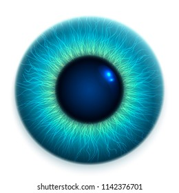 Close-up of human eye, cornea, retina, pupil. Blue 3d iris. Eyeball icon design isolated on white background. Realistic vector illustration