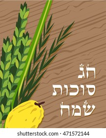 Closeup of Lulav (date palm) ,Etrog (citron) , Arava (willow) and Hadas (myrtle), Four species symbols of the Jewish festival of Sukkot. happy holiday in Hebrew