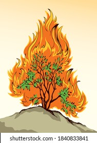 Brennender Busch. Vektorgrafik-Symbol