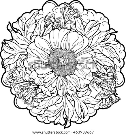 closeup view peony flower coloring page stock vector royalty free