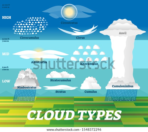 Cloud types vector illustration. Labeled air scheme with altitude division. Nature weather meteorological and geographical info graphic with stratus, cumulus, anvil and cirrus classification examples.