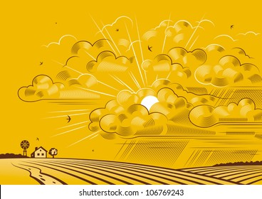 Clouds over fields. Vector