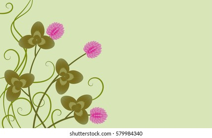 clover flower on a green background
