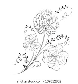 Clover flowers isolated on white background. Vector illustration.