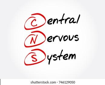 CNS - Central Nervous System acronym, concept background