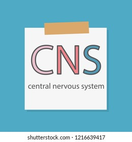 CNS central nervous system written in a notebook paper- vector illustration