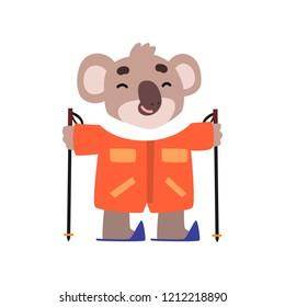 Coala bear skiing, cute animal cartoon character on winter vacation vector Illustration on a white background