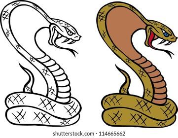 cobra bite