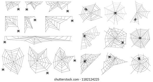 Cobweb spider cobwebs realistic. A spider weaves a spider web. Flat design, vector illustration, vector.