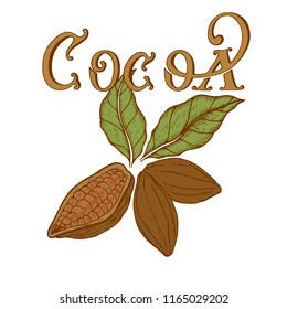 coca's logo in retro style hand-drawn, vector illustration, design element, chocolate logo, colored emblem of cocoa