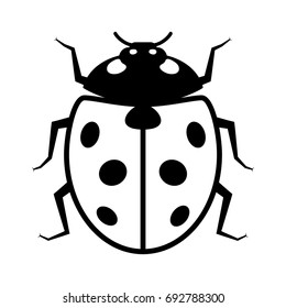 Coccinellidae Ladybug or ladybird beetle insect flat vector icon for wildlife apps and websites