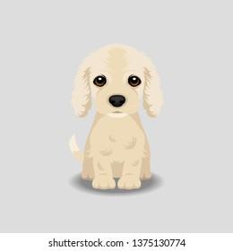 Cocker Spaniel Puppy Vector Illustration. Dog isolated