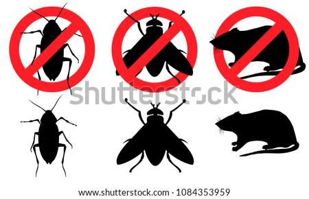 Cockroach fly rat Pest