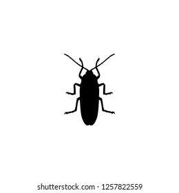 cockroach icon vector. cockroach vector graphic illustration