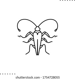Cockroach vector icon in outlines