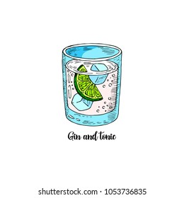 Cocktail gin and tonic in sketch style for menu, cards. Contemporary Classic cocktail. Highball cocktail