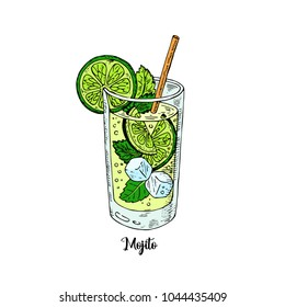Cocktail mojito in sketch style for menu, cocktail cards. Mojito Contemporary Classic cocktail. Longdrink. Fresh lemonad soda summer drink.